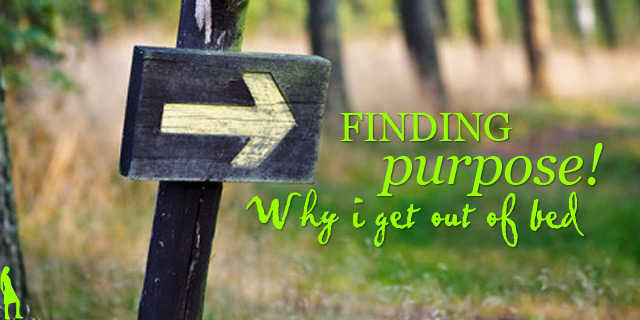 Finding purpose: Why I get out of bed!